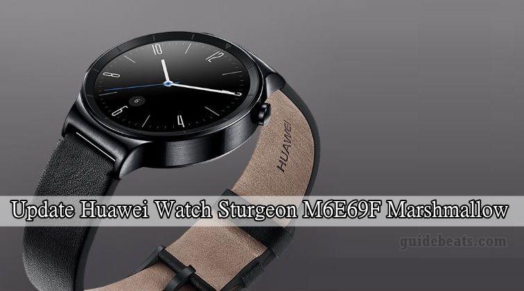 Install Huawei Watch Sturgeon M6E69F Marshmallow